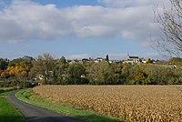 View of Saint-Michel-sur-Loire.jpg