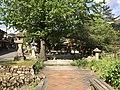 View of Yasaka Shrine 20170503.jpg