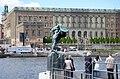 Vingarna Stockholms slott 2010.jpg