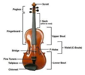 Violin - The construction of a violin