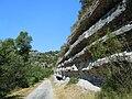 Vogué falaises calcaires Ripisylve et lit majeur de l'Ardèche.jpg