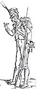 Volteggiatore della Vecchia Guardia Adolphe de Chesnel