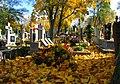 Włocławek,jesień na cmentarzu - panoramio.jpg