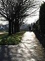 Walking the dog - geograph.org.uk - 674737.jpg