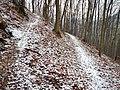 Wanderweg bei Eningen - panoramio (1).jpg