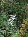 Wash Dike - geograph.org.uk - 582579.jpg