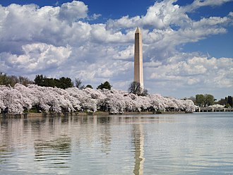 Washington, D.C. - The Washington Monument seen across the Tidal Basin during 2007's National Cherry Blossom Festival