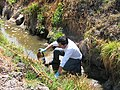 Wastewater samples (15083705294).jpg
