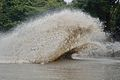 Water Splash During Dredging - Kings Lake Dredging - Banyan Avenue - Indian Botanic Garden - Howrah 2013-10-27 3852.JPG
