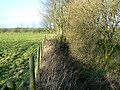 Watercourse (2) - geograph.org.uk - 316278.jpg