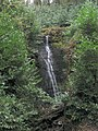 Waterfall on tributary to Loughor - geograph.org.uk - 298998.jpg