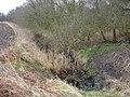 Watering Hole^ - geograph.org.uk - 644019.jpg