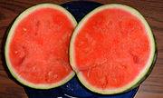 small seedless watermelon