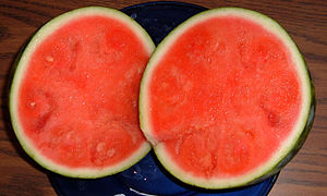 Seedless watermelon Purchased Feb. 2005 in Atl...