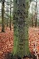 Wayne Township Nature Park (5) (11020249076).jpg
