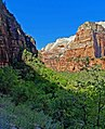 Weeping Wall Trail, Zion NP 5-14 (31102104221).jpg