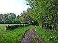 Weg - panoramio (18).jpg