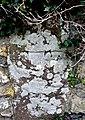 Wheel Cross Mathry Church - geograph.org.uk - 947068.jpg