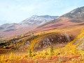 Whitecrown Mountain (48680932596).jpg
