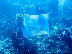 Wikipedia Hulontalo Flag with Divers.jpg