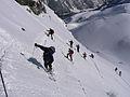 Wildkar 2601 2007-03-11.JPG