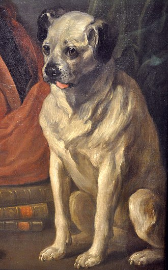 Trump (dog) - Trump, in a detail from William Hogarth's Painter and his Pug, 1745