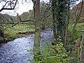 Wincle - River Dane - geograph.org.uk - 280555.jpg