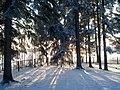 Winter - panoramio (30).jpg
