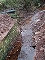 Winterburn Brook from Demolished Bridge, Shropshire - geograph.org.uk - 617682.jpg