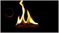Wood enjoying fire 2.jpg