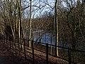 Woodland and River Kelvin - geograph.org.uk - 681802.jpg