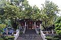Xiamen Nanputuo 20120226-06.jpg