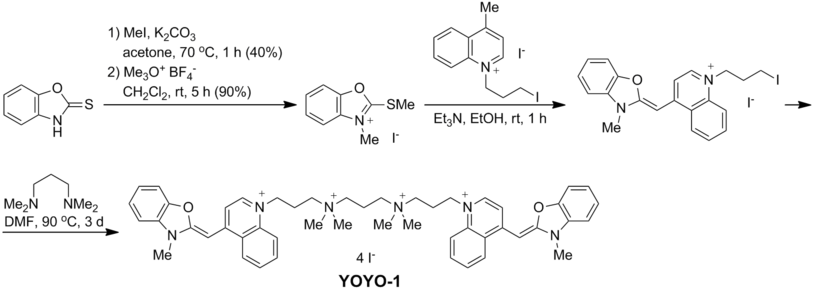 YOYO-1 synthesis