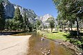 Yosemite Park at Swinging Bridge with Heart 2013.jpg