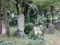 Zentralfriedhof Wien JW 028.jpg