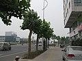 Zhongyuan, Zhengzhou, Henan, China - panoramio - 柳少阳 (49).jpg