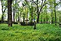 !-2009-wschowa-lapidarium-general-view-abri.jpg