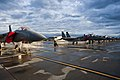 """Exercise Red Flag-Alaska 11-3"" - Flickr - aeroman3.jpg"
