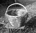 """""""Zej"""" (košara), Medana 1953 (cropped).jpg"""