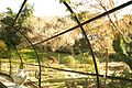 ® S.D.I. MADRID PARQUE DEL OESTE - ROSALEDA - ANILLO - panoramio (4).jpg