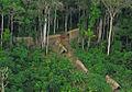Índios isolados no Acre 7.jpg