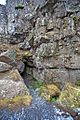 Þingvellir - panoramio (14).jpg