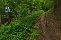 Červený turistický chodník mezi Novou Sedlicou a Temným vrškom, Národný park Poloniny.jpg