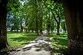 Алеї в парку. м.Летичів.jpg