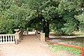 Аллеи парка. Фото Виктора Белоусова - panoramio.jpg