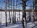 Вид на оз. Теренкуль - panoramio.jpg