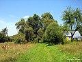 В деревне Калиновая - panoramio.jpg