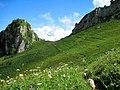 Гузерипльский перевал, Кавказский заповедник..jpg