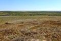 Долина речки Куралы - panoramio.jpg