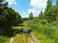 Между с-т Русь и Селиванихой 2013 - panoramio (48).jpg